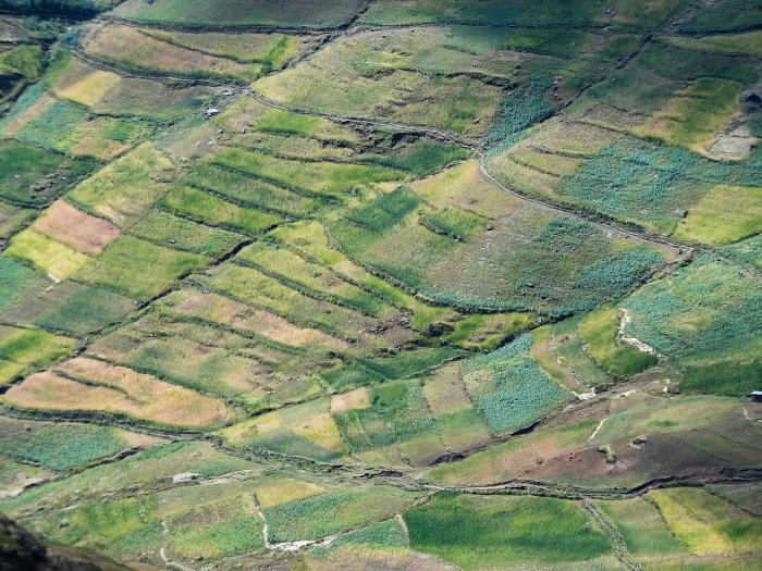 Земля под фермерское хозяйство